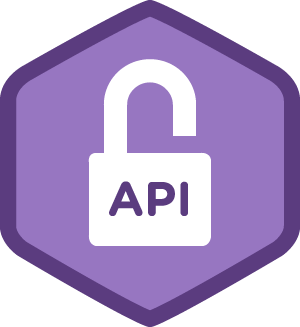 API Protection